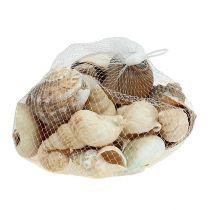 Déco Maritime Coquille Mix Naturel 400g
