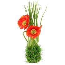 Rouge coquelicot dans l'herbe 23cm