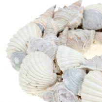 Couronne de coquillages blanc Ø14cm