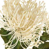 Peluche fleurs artificielles exotique leucospermum crème 73cm 3pcs