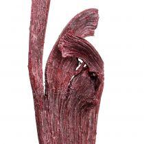 Mélange de pièces de bois Natraj rouge blanchi 10 p.