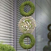 Couronne d'anneaux en mousse florale H4cm Ø30cm 4pcs