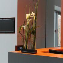 OASIS® Black Table Deco Medi mousse florale 4pcs