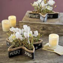 Étoile en mousse florale humide pour arrangements 25 x 25 x 4,5 cm