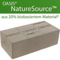 OASIS® NatureSource brique mousse florale 23cm × 11cm × 7cm 10pcs