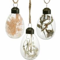 Œufs de Pâques avec fleurs séchées, œufs décoratifs en verre véritable, décorations florales de Pâques à suspendre, œufs en verre 8 pièces