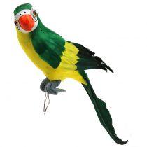 Deco Perroquet Vert 44cm
