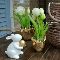Tulipe perroquet en pot Blanc Real-Touch 23cm