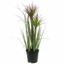 Herbe de papyrus artificielle en pot Vert, rouge violet 45cm
