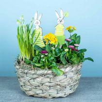 Jardinière en foin, panier décoratif, panier à plantes, panier à fleurs ovale, lot de 3