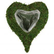 Coeur végétal mousse 28cm x 23cm