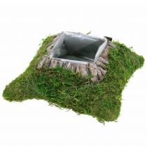 Coussin végétal mousse, écorce 25cm × 25cm