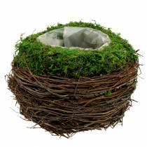 Bol à planter en rotin, mousse Ø19cm H13cm