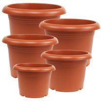 """Cache-pot """"Oliver"""" en terre cuite, Ø15cm - 45cm, 1pce"""