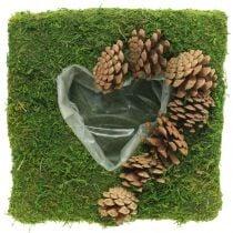 Coussin végétal coeur mousse et cônes carré 25×25cm