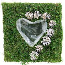 Coussin végétal coeur mousse et cônes, blanc lavé 25×25cm