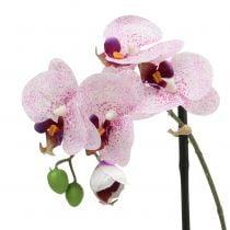 Phalaenopsis en mauve et blanc H38cm en coupe