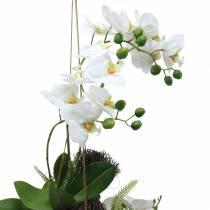 Orchidée avec fougère et balles de mousse à suspendre Plante artificielle 64cm