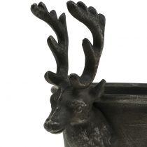 Tasse à tête de cerf Ø21cm H28.5cm