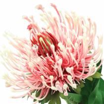Protea Artificielle Rose 73cm