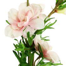 Pied d'alouette rose clair L. 95 cm