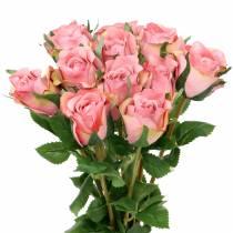 Rose vieille rose 42cm 12pcs