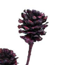 Branches de salignum avec cônes Bordeaux 25pcs