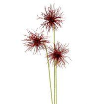 Fleurs de soie Xanthium bordeaux 63 cm 4 p.