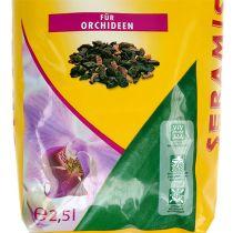 Substrat spécial Seramis® pour orchidées (2,5 litres)