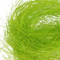 Herbe décorative verte printanière en sisal 500g