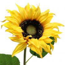 Tournesol jaune à longue tige 53 cm