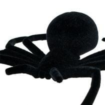 Araignée noire 16 cm floquée