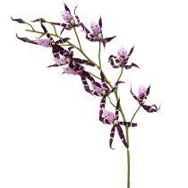 Orchidée Brassia mauve 108cm 3P