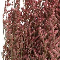 Fleurs séchées rose lavande de mer Statice tatarica 100g