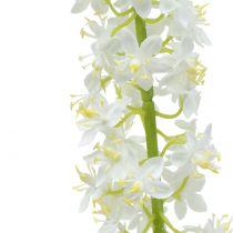 Lis des steppes blanc 106 cm