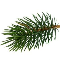 Pointes de sapin vert 10cm 36pcs