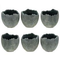 Cache-pot coquille d'oeuf Ø12cm H11.5cm 6pcs