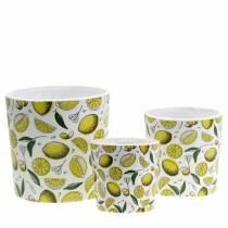 Cache-pot jaune citron Ø8/10/13cm Lot de 3
