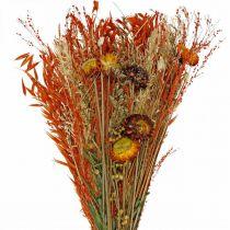 Bouquet de fleurs séchées orange mix 42cm