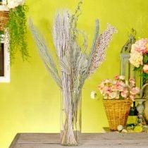 Mélange de fleurs séchées blanc-nature exotique, mélange de flore sèche