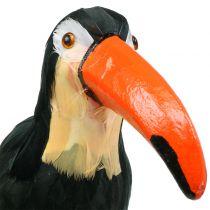 Toucan deco a plumes noir L37cm