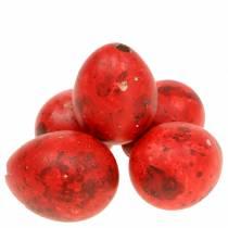 Œufs de caille Œufs soufflés rouges 50p
