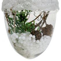 Décoration de sapin Glands de chêne avec neige Ø8cm 2pcs