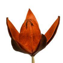 Lys sauvage sur un bâton orange 45p
