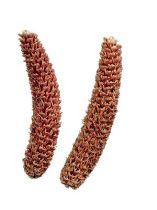 Cônes d'épicéa râpé naturel 2kg
