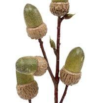 Branche de glands brun, vert L. 30 cm