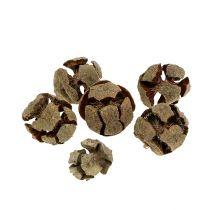 Cônes de cyprès naturel 3cm 500g