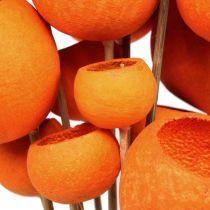 Bell Cup Mix sur bâtonnet orange 15pcs