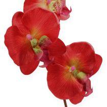 Orchidée décorative rouge 68cm