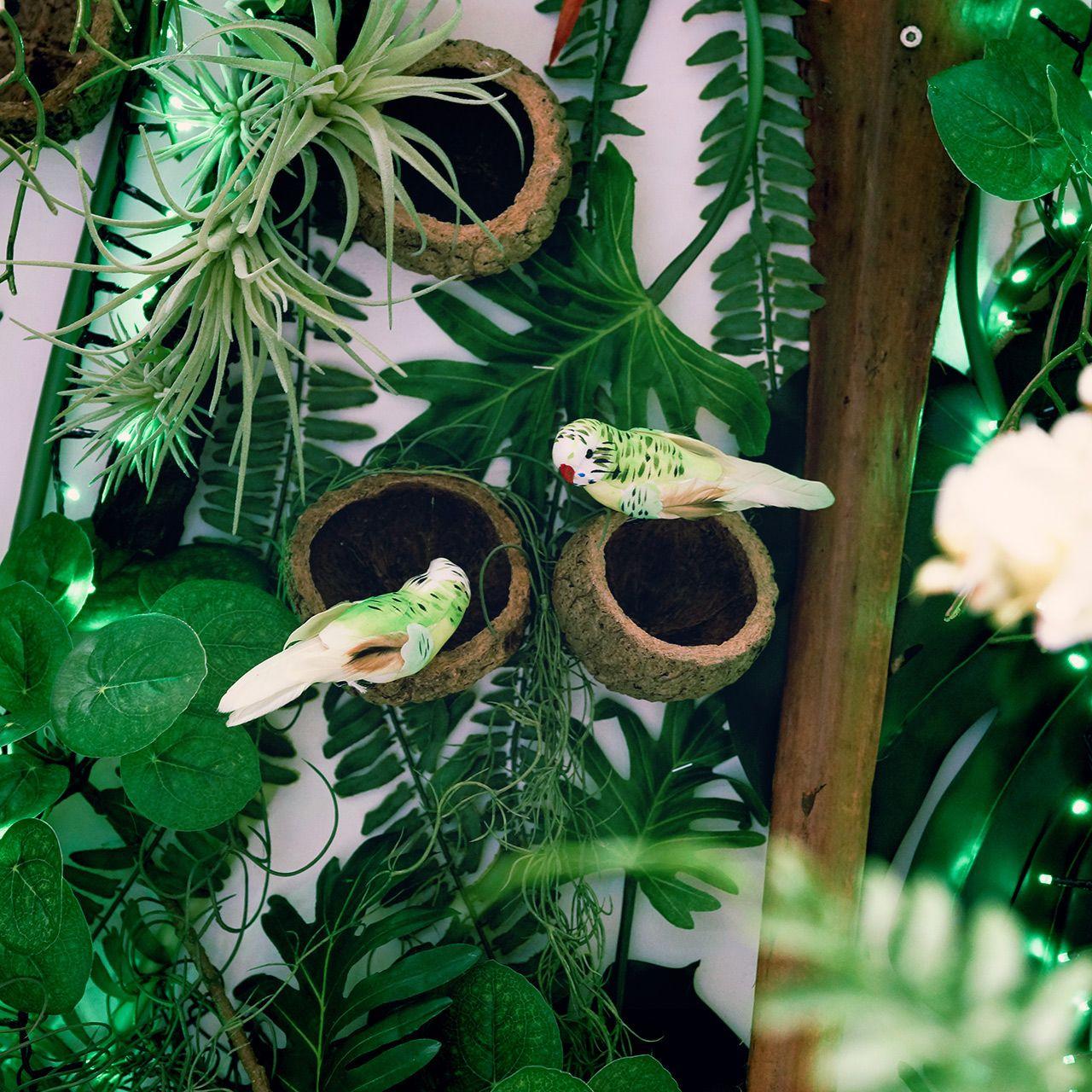 Ou Acheter De La Mousse Pour Piquer Des Fleurs oiseaux & papillons décoratifs - articles de décoration